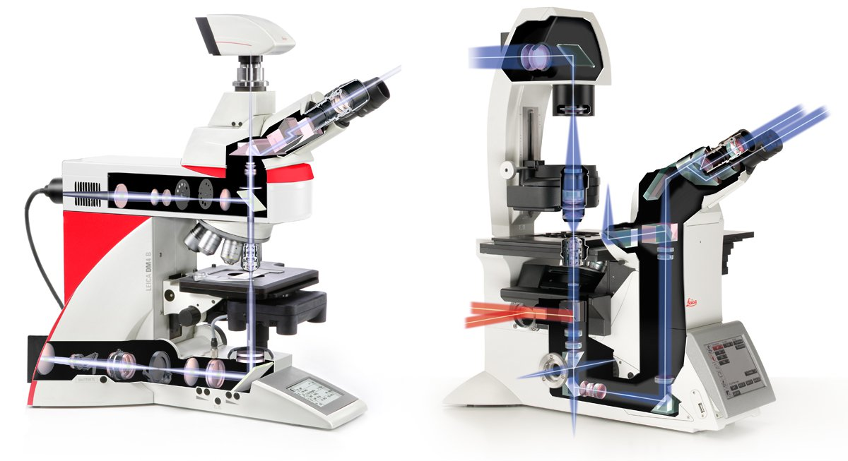 Lightpath of research microscope