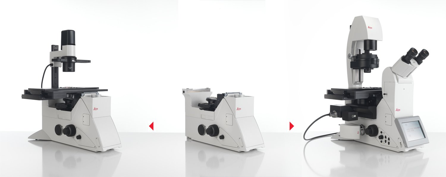 Leica DMi8 can be configured according to the researchers needs
