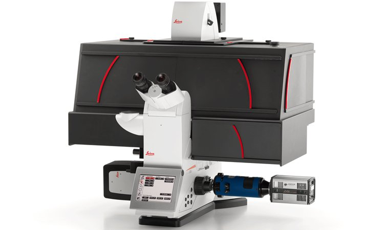 Live cell imaging system Leica DMi8