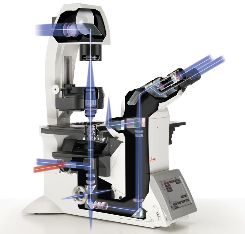 Dmi8 S Platform Live Cell Microscope Products Leica Microsystems